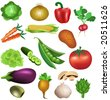 set of vegetables - stock vector