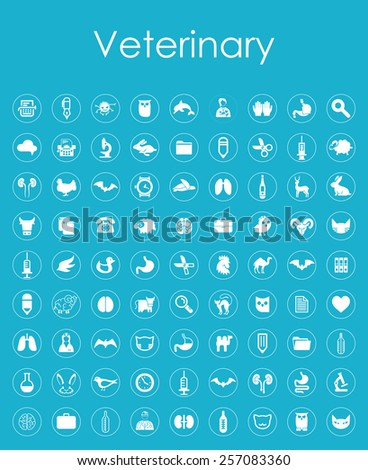 Set of veterinary simple icons - stock vector