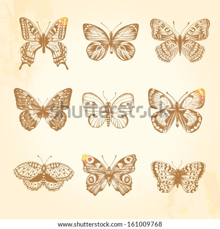 Set of vintage butterflies. 9 beautiful brown butterfly on a beige background. Vector illustration. - stock vector
