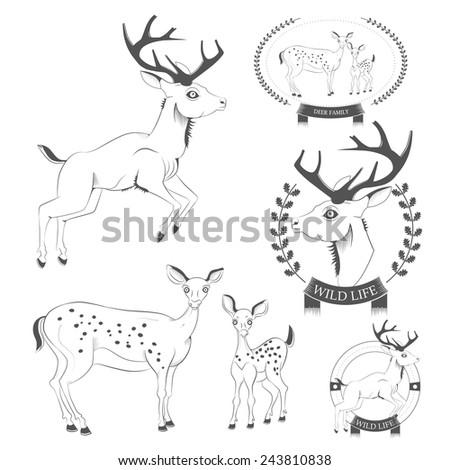 Set of vintage deer, emblems, labels, logo vector - stock vector
