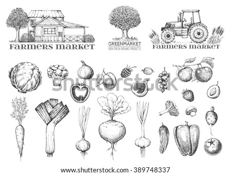 Set of vintage retro farm logo. Label and design element. Tree, tractor, house. Vegetables, fruit and berry. Logotype. Fresh eco farm product. Hand drawn illustration. Farmers market. Style engraving.