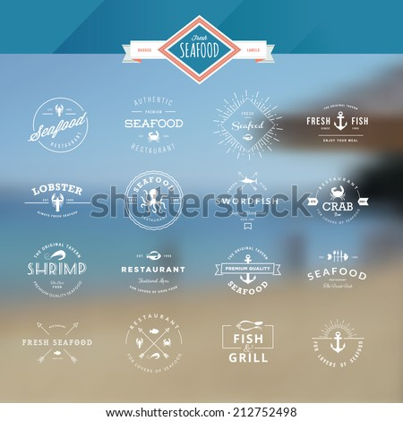 Set of vintage style elements for labels and badges for seafood, on the sea background     - stock vector