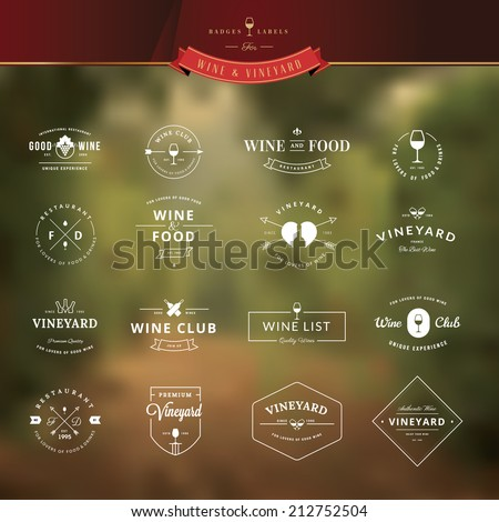 Set of vintage style elements for labels and badges for wine, vineyard, wine club and restaurant, on the vineyard background     - stock vector