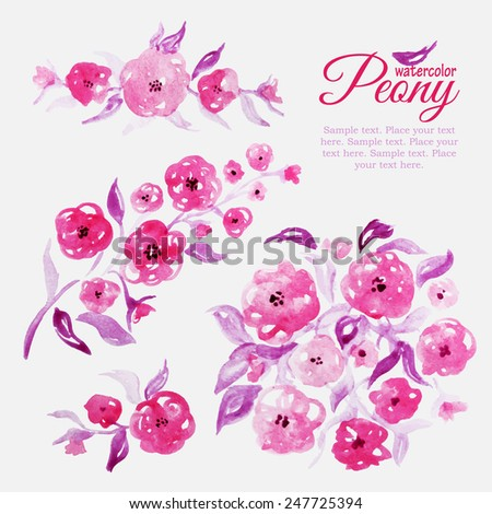 Set of watercolor floral peony elements for design. Paint collection. Spring pattern - stock vector