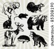 Set of Wild Animals Hand Drawn - stock photo