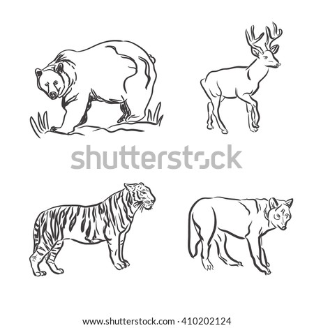 set of wild animals in sketch style, vector illustration - stock vector