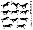 Set of wild horses. Vector horse collection. Silhouettes of horses. Collection of horse race, jump, run. Black and white vector illustration with eleven horses - stock vector