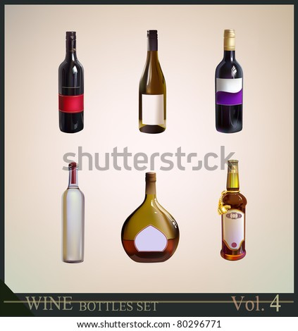 set of wine bottles - stock vector