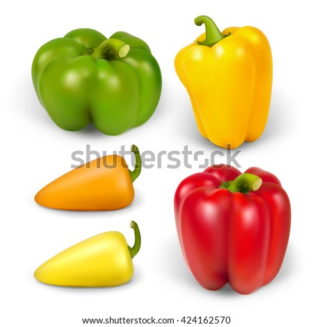 set realistic peppers - stock vector