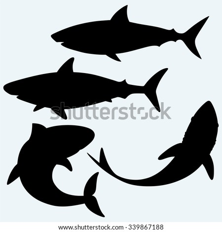 Set shark. Isolated on blue background. Vector silhouettes - stock vector