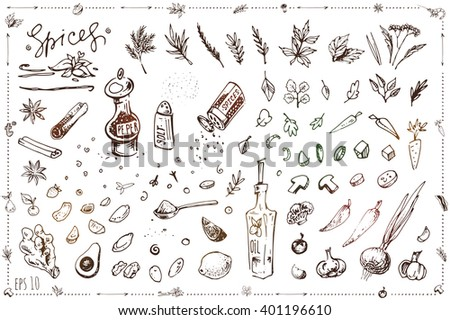 set sketch illustrations and icons for design in cooking, recipe books, menu, packaging, coloring. Isolated vector parts can be painted. art. vintage. vegetables, spices, pepper, salt, oil - stock vector