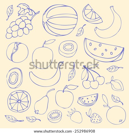 Set Sketches of fruit, isolated, vector illustration. - stock vector