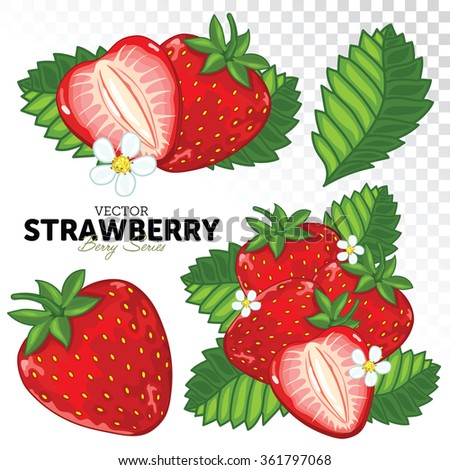 Set Strawberry Compositions, Strawberry Leaves, Strawberry Vector, Cartoon illustration of Strawberry. Strawberry Isolated on White Background. Juicy Strawberry Collection. - stock vector