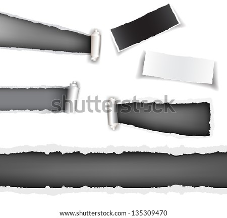 Set torn paper grey - stock vector