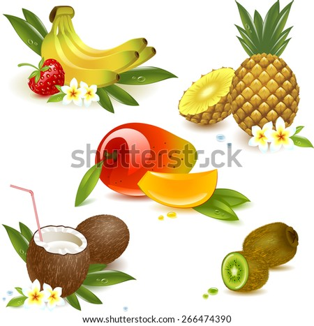 set tropical fruits isolated on the white. Vector illustration - stock vector