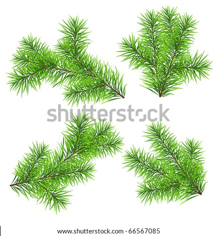 Set vector Christmas tree branch for decorate . Easy to make your own one. - stock vector