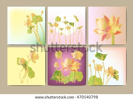 Set vector lotus stripes background for text.