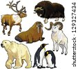 set with arctic animals,pictures isolated on white background - stock photo