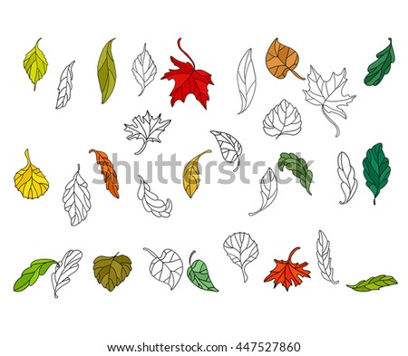 Set with different autumn leaves