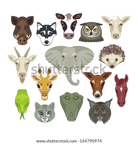 Set with heads of various wild and domestic animals - stock vector