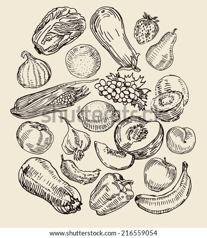 Set with various drawn fruits and vegetables