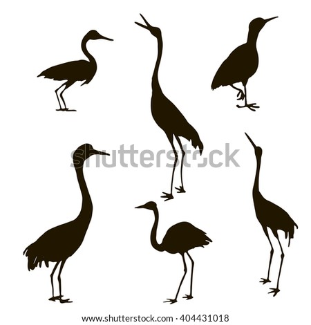 shadoofs, vector set of hand drawn birds silhouettes,  isolated natural elements