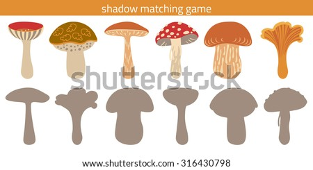Shadow watching game: russula, greasers, brown-cap boletus, amanita, porcini, chanterelle. Game with silhouettes for children. Mushrooms.