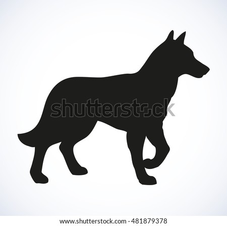Shaggy Alsatian police GSD Deutscher Schäferhund isolated on white background. Black ink hand drawn image in art retro style pen on paper. Closeup view with space for text