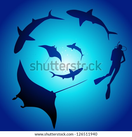 Shark and diver, swimming with sharks - stock vector