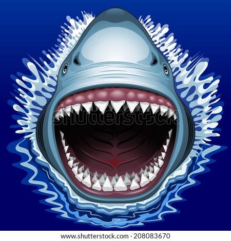 Shark Jaws Attack - stock vector