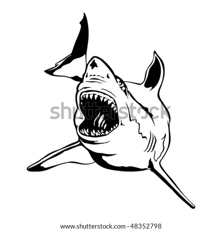 Shark. tribal vector illustration - stock vector
