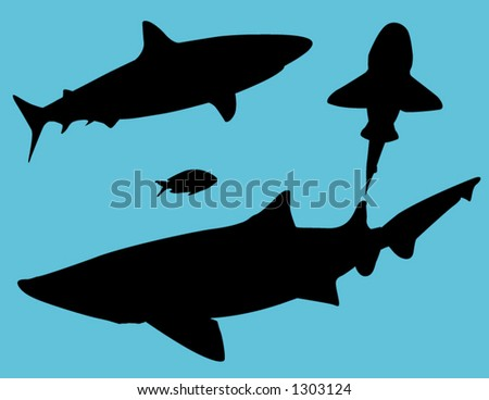 sharks - stock vector