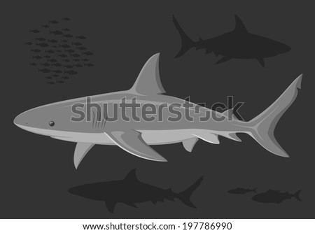 Sharks in the deep sea. Sharks. Set of great white sharks over dark background. Vector sharks. Black and white illustration. Vector illustration.