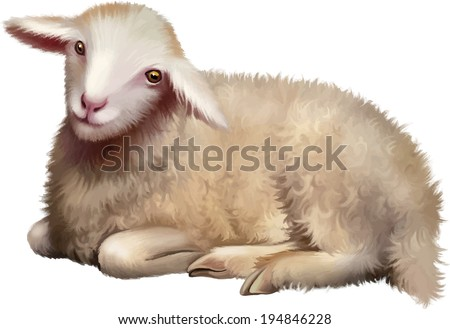 Sheep laying down. Vector illustration isolated on white - stock vector
