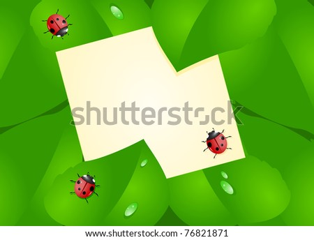 Sheet of paper located among the green leaves with creeping ladybirds