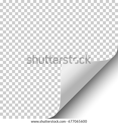 Curly Page Corner Peeled Sticker Edge Stock Vector