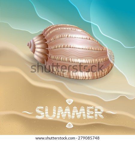 Shell on the waves. Abstract background.  Vector eps 10. - stock vector