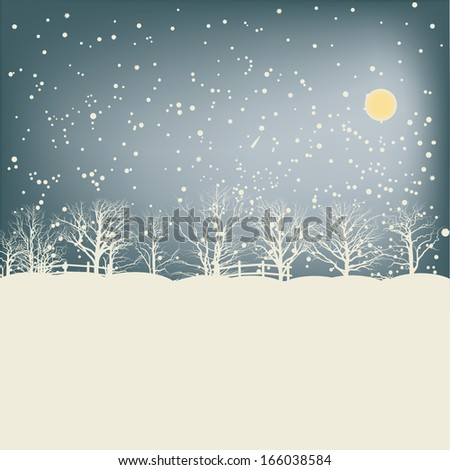 Shining sky, moon and soft snow in the wood