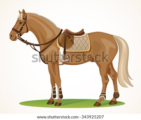 Show Jumping horse standing - Realistic brown horse with saddle and bridle isolated