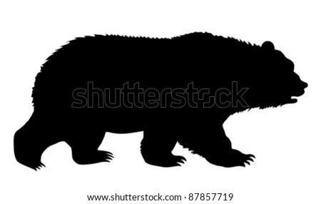 silhouette bear on white background - stock vector