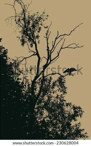 silhouette dry tree with crow. vector illustration