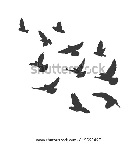 starlings clipart