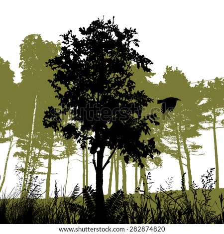 Silhouette forest. Vector - stock vector