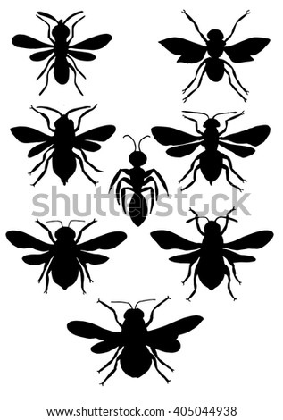Silhouette insects. Collection of flies. Line art. Black and white drawing by hand. Seth ornamental insects. Wasp. Bumblebee. Hornet ?ircuit.