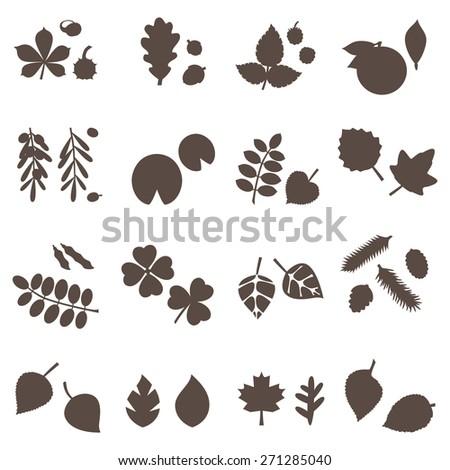 silhouette leaves vector set  - stock vector