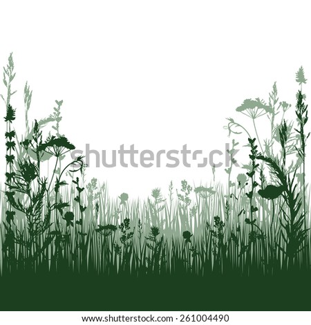 silhouette meadow grass and twigs of plants. vector illustration