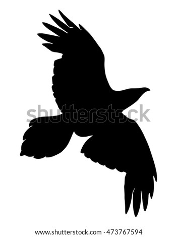 Silhouette of a bird of prey. Offensive crows. Rook.