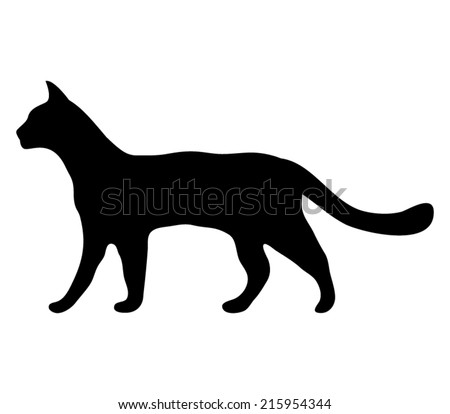 silhouette of a cat  - stock vector