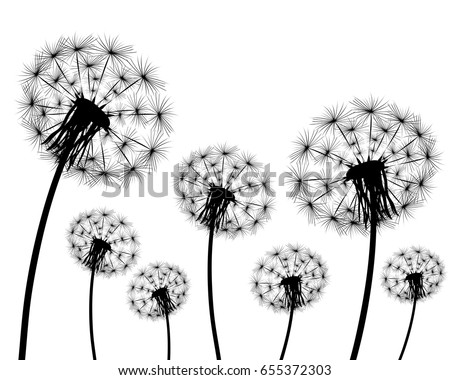 dandelions blowing the wind coloring pages | Dandelion Tattoo Stock Images, Royalty-Free Images ...