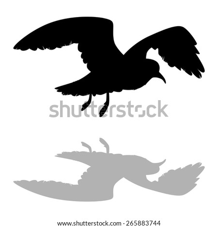silhouette of a flying Seagull against a white background vector - stock vector